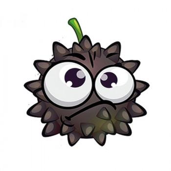 Grumpy Bob 12,5ml Aroma by FruiZees