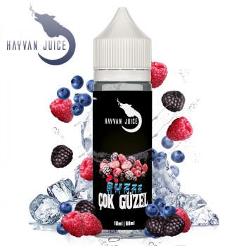 Cok Güzel 10ml Aroma by Hayvan Juice