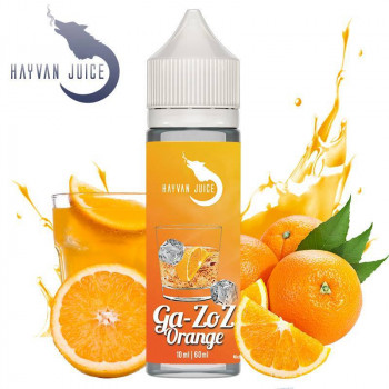 Ga-ZoZ Orange 10ml Aroma by Hayvan Juice