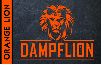 Dampflion Aroma 20ml  / Orange Lion