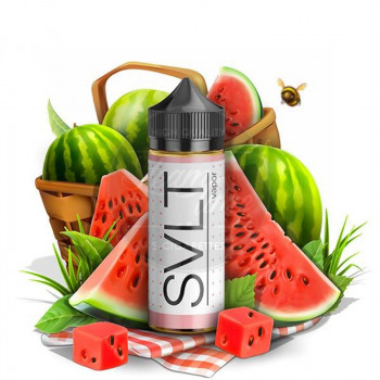 Watermelon Patch (100ml) Plus e Liquid by SLVT Humble Juice Co. & Solace Vapor