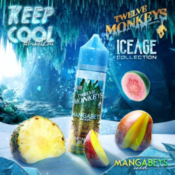 Mangabeys ICED Ice Age Serie (50ml) Plus e Liquid by Twelve Monkeys