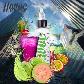 Havoc Jucie Co. Liquid Tsunami 180ml