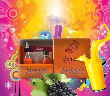 Fantasi Aroma Mango Blackcurrant Ready to Shake 30 ml