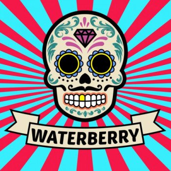 Vaper´s Valley El Bonneyo E-Liquid 50ml Waterberry 0mg